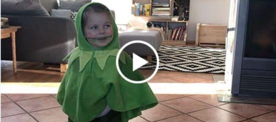 Schminkvideo zum Frosch