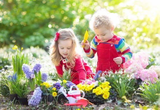 Gärtnern mit Kindern: Blumen pflanzen