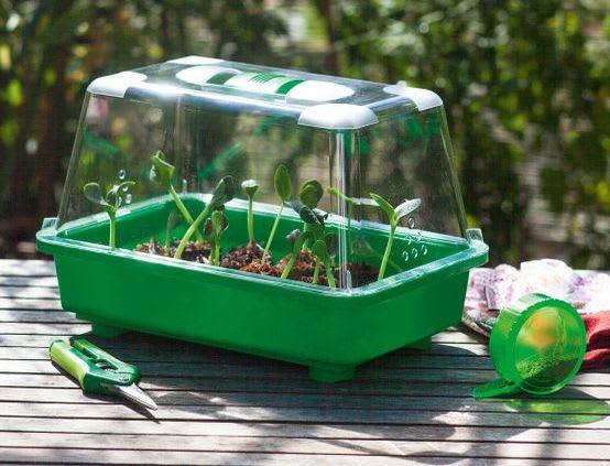 Gärtnern mit Kindern: Kräuter anpflanzen