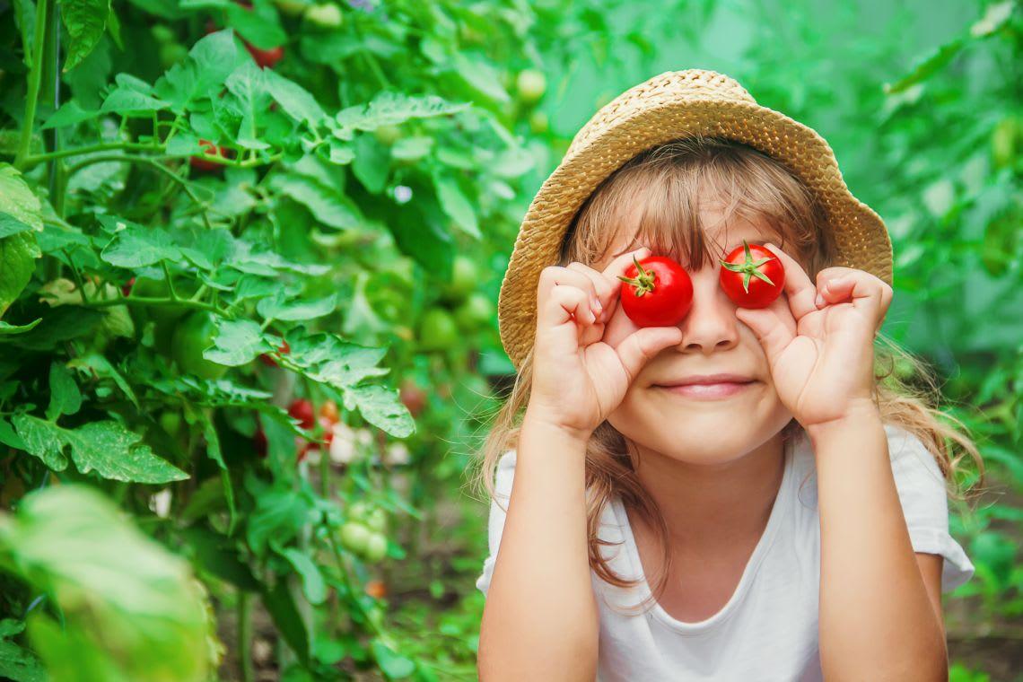 Gärtnern mit Kindern: Tomaten pflanzen