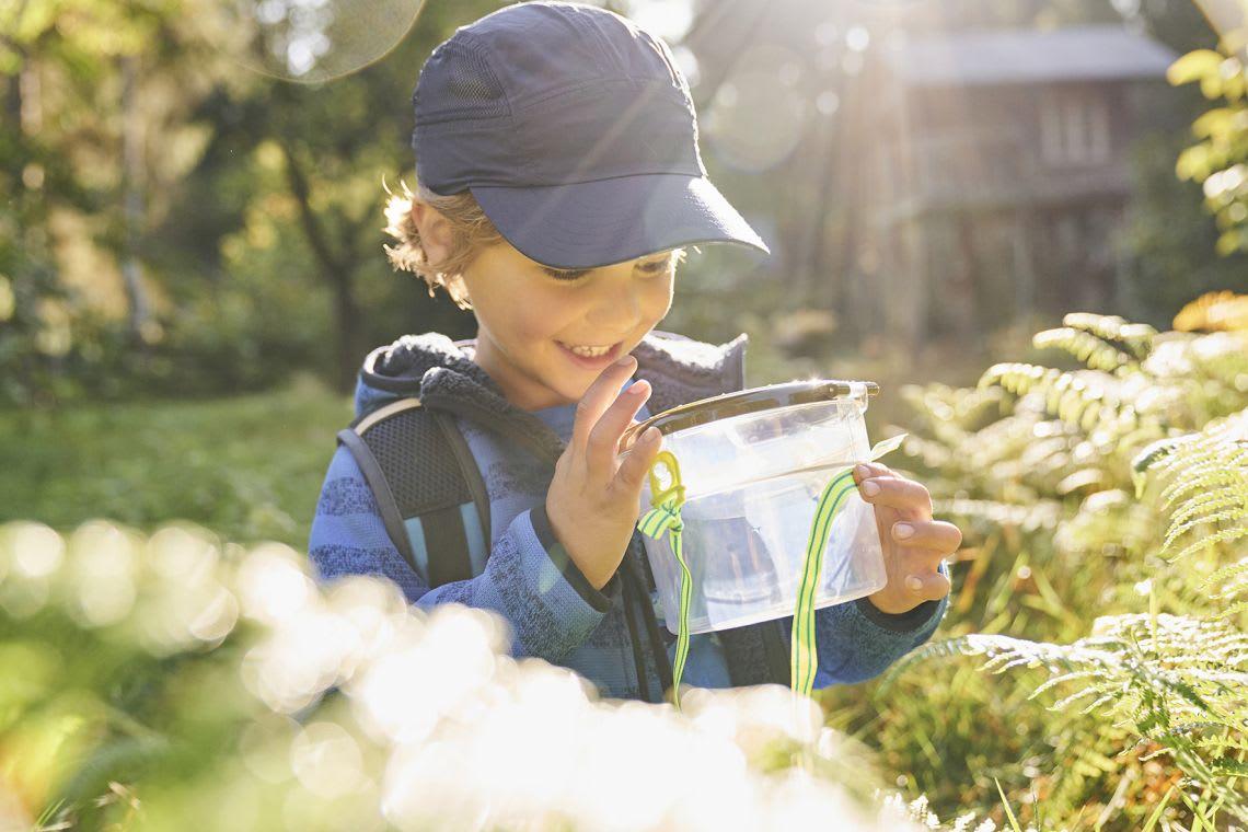 Insektenhotel bauen: Kind beobachtet Insekten