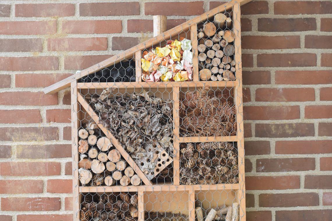 Standort: selbst gebautes Insektenhotel