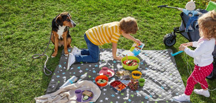 Familie macht Picknick mit Kindern und Hund